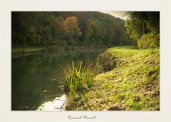 Autum Pics (Sivispacem...) Tags: autumn fall france landscape colors gudmont grandest sony sonyalpha a7ii mitakon 50mm 095 sun soleil automne campagne tourisme eau water
