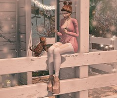 ♚ LOTD #196  ♚ (Charlote.Marchetti) Tags: scandalize supernaturalstore enchante opalehair sl secondlife fotografic cat