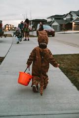 Walking All By Himself (_Codename_) Tags: henry halloween 2018 pumpkin orange dinosaur trex tyrannosaurusrex jurassicpark costume cosplay toddler baby trickortreat trickortreating bucket