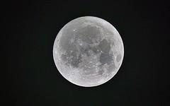 Novembermoon (Rolf Dietrich Brecher) Tags: moon mond