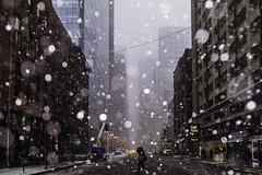 Across the Way (aerojad) Tags: eos canon 80d dslr 2019 autumn outdoors city urban chicago snow snowing snowkeh cityscape citylife cityview theloop stranger strangersinmyfeed busystranger bokeh
