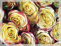 """... found roses of yesterday..."" (Marcia Portess-Thanks for a million+ views.) Tags: closeup photography bouquet rosas fleur flores flowers marciaaportess marciaportess map foundrosesofyesterday"