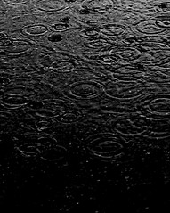 WN IT RS IT PS. (updownmo) Tags: rain raindrop blackandwhite water pours drops capture moments timeless time mood atmosphere photo image simplicity simple dark light grey naturallighting countless innocent art artistry shades shadesofgrey shadow concretefloor flickr bestphotography bestpicture iphone5 iphonecamera iphonephotography iphone5camera iphone5image