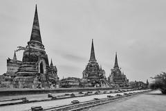 Ayutthaya – Wat Phra Si Sanphet (Thomas Mulchi) Tags: ayutthayahistoricalpark phranakhonsiayutthayadistrict thailand 2019 wat buddhism buddhisttemple temple pagoda watphrasisanphet bw monochrome phranakhonsiayutthaya