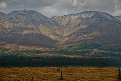 Taking in a Zoomed in View of Mountains (thor_mark ) Tags: alaska2019 alaskarange alaskayukonranges alongroadside azimuth319 bluesskieswithclouds clouds colorefexpro day4 dxophotolab3edited hayesrange hillsideoftrees imagecapturewitharsenal landscape lookingnw mountainpeak mountains mountainsindistance mountainsoffindistance mountainside nature nikond800e outside partlycloudy portfolio project365 ridgeline ridge ridges roadsidepulloff roadsidestop rollinghillsides sunny trees witharsenal summit alaska unitedstates