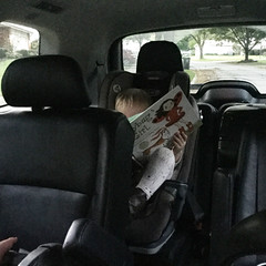 """Dani Reads in the Car • <a style=""""font-size:0.8em;"""" href=""""http://www.flickr.com/photos/109120354@N07/49052439596/"""" target=""""_blank"""">View on Flickr</a>"""