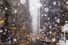 A Beautiful, Beautiful Mess (aerojad) Tags: eos canon 80d dslr 2019 autumn outdoors city urban chicago snow snowing snowkeh cityscape citylife cityview lasallestreet theloop bokeh