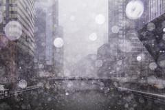 Slushed Bridges (aerojad) Tags: city autumn urban snow chicago canon outdoors eos dslr 2019 80d train cityscape cta traintracks citylife trains snowing traintrack cityview snowkeh river bokeh stranger theloop chicagoriver busystranger strangersinmyfeed