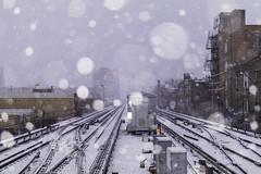 Off Into the Storm (aerojad) Tags: eos canon 80d dslr 2019 autumn outdoors city urban chicago snow snowing snowkeh cityscape citylife cityview cta train traintracks trains traintrack edgewater bokeh
