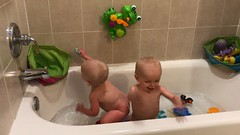 """Luc and Sam Take a Bath • <a style=""""font-size:0.8em;"""" href=""""http://www.flickr.com/photos/109120354@N07/49052703562/"""" target=""""_blank"""">View on Flickr</a>"""