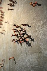 """Shadows"" by Merab Surviladze - Detail [Venice - 26 October 2019] (Doc. Ing.) Tags: 2019 nikond5100 venice ve veneto nordest italy 58rdbiennale 58rdartbiennale 58rdvenicebiennale mayyouliveininterestingtimes biennale2019 venicebiennale2019 art installation artwork exhibit exhibition collateralevent palazzomora personalstructures shadows merabsurviladze belgium georgia miniature"