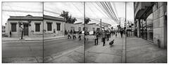 OCTUBRE CHILENO / Octubre Linarense (27) (ORANGUTANO / Aldo Fontana) Tags: chile regióndelmaule linares provinciadelinares movilizaciones marcha protesta manifestaciones blanconegro blackandwhite nikon nikond750 calle street protest aldofontana orangutano flickr gente people multitud crowd