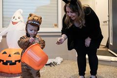 Thank You! (_Codename_) Tags: henry halloween 2018 pumpkin orange dinosaur trex tyrannosaurusrex jurassicpark costume cosplay toddler baby trickortreat trickortreating ghost bucket