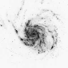 Not Very Colorful Pinwheel Galaxy (sjrankin) Tags: pinwheelgalaxy messier101 m101 12november2019 edited nasa esa hubblespacetelescope hst europeanspaceagency galaxy grayscale