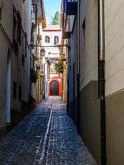 San Pedro Street (deepaqua) Tags: street spain sanpedro window door granada