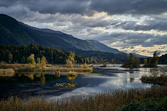 Cheam Wetlands (martincarlisle) Tags: cheamwetlands mountcheam fraservalley britishcolumbia canada wetlands lakes water grass bush trees mountains hills sky clouds sunset autumn fall sony cameras rokinonlenses captureonepro12 tkactionsv7 scenicsnotjustlandscapes