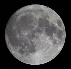 20191111 Moon (Roger Hutchinson) Tags: space canonphotography canoneos6d canon celestronedgehd11 celestron astronomy astrophotography london moon