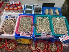 Oysters (Panda Mery) Tags: bangbaedong korea seoul oyster