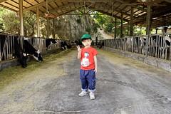 (奈勒斯 / LINUS) Tags: sony a6400 portrait kid child boy son