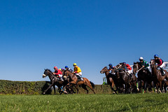 Horses at full gallop at a race (Ivan Radic) Tags: 56ljubičevskekonjičkeigare 56ljubičevskiekonjičkeigare canoneosm50 horseriders ljubičevskekonjičkeigre2019 pferd pferderennen pozarevac reiter rennpferd rider serbia serbien srbija veranstaltung event flags horse horseracing ivanradic racinghorse reiten riding sigma 2470mm f28 dg os hsm art sigma2470mmf28dgoshsmart