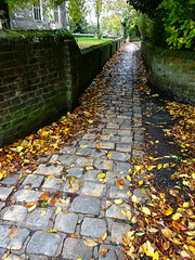Autumn footpath in Tring (Snapshooter46) Tags: autumnleaves footpath tring stonesets