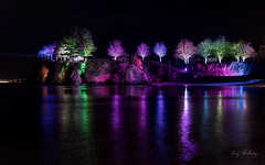 Corbyn Lights (RTA Photography) Tags: wavelength eyeview corbynshead torquay lightfestival light colour night nightphotography sea reflections trees nikon d750 longexposure devon torbay art rtaphography tamron2470mmf28vcusd