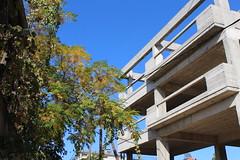 Χτίζουμε ή φυτεύουμε; (Argyro Poursanidou) Tags: nature building decay life city tree protection color φύση προστασία πόλη κτίριο οικοδομή χρώμα σπίτια αναγέννηση φθορά άνθρωποσ ζωή δέντρο