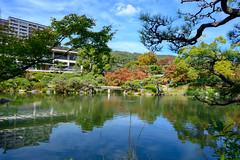 Sorakuen(相楽園) (Hideki-I) Tags: garden sorakuen kobe hyogo japan nikon z7 2470 庭園 日本 兵庫 神戸 相楽園