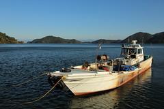 Fishing boat (Teruhide Tomori) Tags: 滋賀県 近江八幡 沖島 島 琵琶湖 漁船 ボート 日本 関西 fishingboat okishimaisland lakebiwa shiga biwako japan japon water evening lake omihachiman