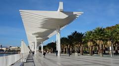 Málaga_06423 (Wayloncash) Tags: spanien spain andalusien málaga costadelsol