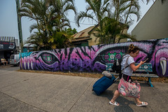 Palms & Graffiti (agasfer) Tags: 2019 australia byron bay pentax k3 sigma1020