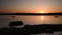 Sunrise At Ron's Hide (rq uk) Tags: rquk nikon d750 nikond750 leereverse06 afsnikkor1835mmf3545ged 52weeksthe2019edition dintonpastures ronshide sunrise week462019startingtuesdaynovember12201952weeksthe2019edition week46theme nochimping