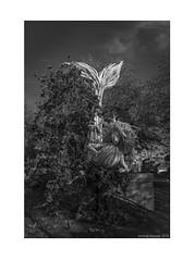 A Mermaid in Castle Park (zolaczakl) Tags: brsitol 2019 november england uk photographybyjeremyfennell jeremyfennellphotography nikond800 nikonafsnikkor24120mmf4gedvrlens artinstallation castlepark bristolinmonochrome blackandwhitebristol blackandwhite mono monochrome bw mermaid artinstallationbyduncanmckellar sculpture tail