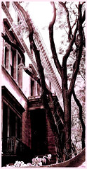 Architectural Chasms (Semplice e cantabile) Tags: architecture mansion chicago trees street urban lightandshadow