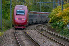 Autumn scenery. (Azariel01) Tags: 2019 belgique belgium bruxelles brussels train sncb nmbs tracks voies autumn fall automne feuilles leaves volent flying thalys tgv hst