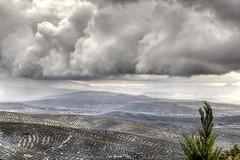 Tormenta (-juanfernando-) Tags: úbeda olivos campo tormenta nubes lluvia nubarrón tempestad mardeolivos hdrlandscape