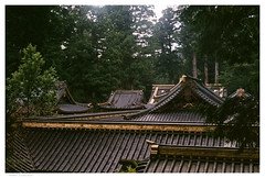 Nikko 4 (hlydecker) Tags: japan summer holiday film travel travelphotography canon rangefinder vintage asia