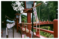 Nikko 1 (hlydecker) Tags: japan summer holiday film travel travelphotography canon rangefinder vintage asia