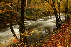 Little River - Smoky Mountains National Park (Steve O'Day) Tags: tennessee smokymountains canon timelapse river fall autumn travel nature