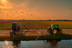 Coy tractor drinking at a local watering hole. (Alex-de-Haas) Tags: alkmaar dji dutch europa europe fc6310 holland nederland nederlands netherlands noordholland p4p phantom phantom4 phantom4pro aerial aerialphotography agriculture akkerbouw beautiful beauty bloemen bloemenvelden boerenland bollenvelden bulbfields farmland farming flowerfields flowers landbouw landscape landscapephotography landschaft landschap landschapsfotografie lente lucht luchtfotografie mooi polder pracht quadcopter schoonheid skies sky spring sundown sunset tulip tulips tulp tulpen zonsondergang oterleek northholland
