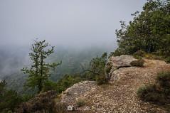 Junto al abismo (SantiMB.Photos) Tags: 2blog 2tumblr 2ig lamussara vilaplana tarragona verano summer baixcamp niebla mist abismo abyss lafebro cataluna españa
