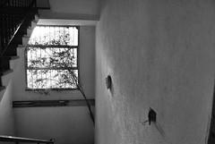 Hungry of light (AliceFerretti) Tags: urbex road street bw blackandwhite nikon absoluteblackandwhite silence shadows