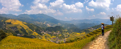 Ping'an Ricefields! (karindebruin) Tags: china holiday vakantie pingan rice rijst ricefields rijstvelden girl women gids gide geel vrouw meisje