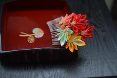 Fall Leaves. Handmade, handdyed silk hair pins. (Bright Wish Kanzashi) Tags: momiji redleaves tsumamizaiku kanzashi 紅葉 つまみ細工 手作り ハンドメイド 正絹 手染め red yellow orange gold