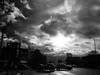 316/365 - Apocalypse Now