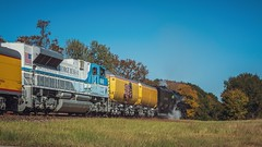UP 4014 & 4141 (lonestarbackroads) Tags: bigboy leoncounty leoncountytexas leoncountytx railroad texas train traintracks tx unionpacific unitedstates us