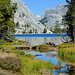 Headwater of Tenaya Creek, Yosemite 10-19