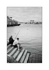 Le Guilvinec (Punkrocker*) Tags: nikon s2 rf rangefinder nikkor 50mm 5014 sc film kodak tmax 100 nb bwfp bnw monochrome port harbor mer sea pecheurs fishermen guilvinec finistere pennarbed bretagne brittany breizh france
