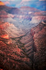 Grand Canyon (Collin R Erickson) Tags: nature grandcanyon utah arizona risingtidesociety photography landscape