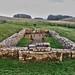 Hadrians Wall, MC 31, Mithras Temple, Brocolitia (12)
